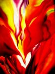 Red Canna- O'Keefe by aanibelle
