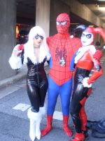 Spider-Man, Black Cat, and HQ by pikaman206