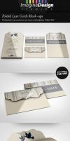 Folded Luxe Cards Mock-ups by idesignstudio