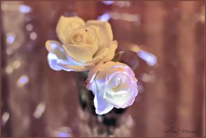 Roses for Kate by ShlomitMessica