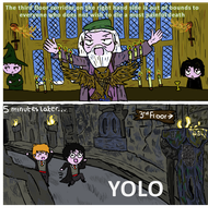 Harry Potter YOLO by GoldenPhoenix75