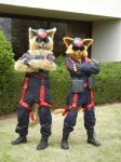 Swat Kats by Lord-of-Rappigs