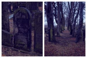 Jewish cemetery by possion