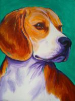 Beagle on teal green by samtaylor5