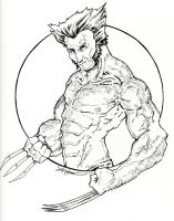 Wolverine 15 by ChrisOzFulton