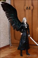 Sephiroth's wing - 03 by scargeear