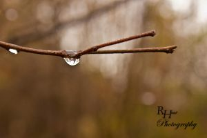 Drop of water by Solanaceae85