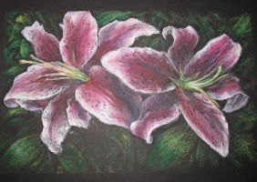 Oil Pastels: Stargazer Lilies by ComradeBitter