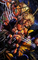wolverine sabertooth by jcyungstar