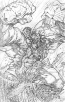 Hulk vs weapon X by warpath28