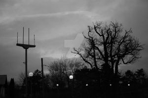 Urban forest and stars by Alonir
