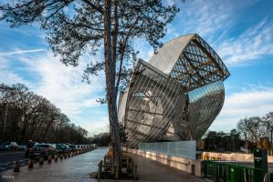 Tree And Modern Architecture by Rikitza