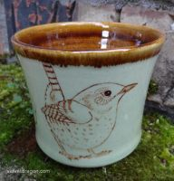 Winter Wren Cup by tser