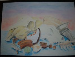 Bones, Feathers, nuts + shells by Forrestris