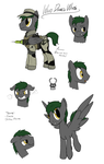 COMMISSION - Character sheet: Who Dares Wins by Brisineo