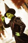 Elphaba by Sasouri