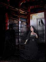 The ghosts in the library... by Villenueve