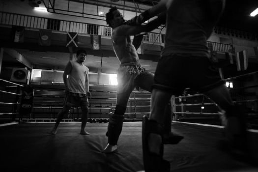 Sparring by johannz