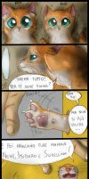 Two red cats - Strip 1 by FuriarossaAndMimma