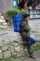 young man in Sangla by magicaldiva