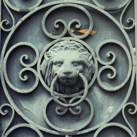wrought lion by KatherineAlexander