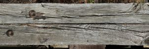 Wood Texture - 11 - Large by AGF81