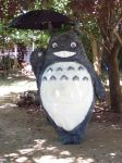 Totoro costume completed by LilleahWest