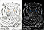 Inverted Drawing ~ Tiger by Keith-arts02