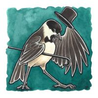Black Hat Chickadee by dcwilson