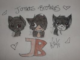 Jonas Brothers - Cat Style by DuneflowerOwner