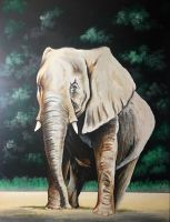 Elephant by WB940618