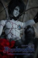 Frankenstein 3 by Ringdoll