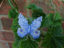Blue butterfly by Autumn-beads