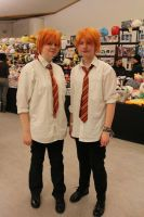 Fred and George by Anna-Hiro
