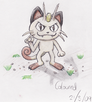 Team Rocket Meowth by GoldFlareon