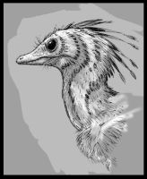 Archaeopteryx head study by dustdevil