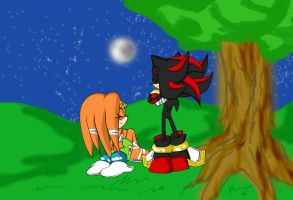 Shadow and Tikal by RX-BlackHowling