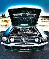 Stang by wrongpixel