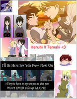Haruhi And Tamaki (Ouran HighSchool Host Club) by spawner8