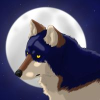 Axel in moonlight by windwolf55x5
