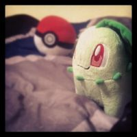 Chikorita on my Bed by Casey333