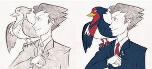 Aerial Ace Attorney by NelmaThyria
