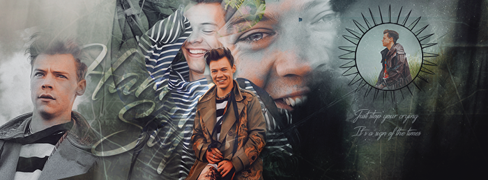 Timeline Harry Styles by Just-too-fancy