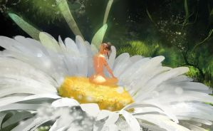 Daisy by ultracold