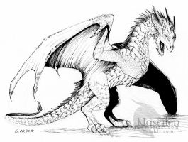 Wyvern by Naseilen