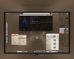 Identify My Desktop by rvc-2011
