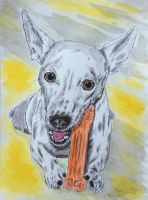 Give a Dog a Bone by peimar