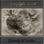 butterfly brushes by AzurylipfesStock