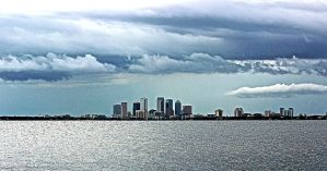 tampa skyline from ballast point by CommonMime