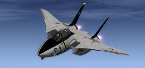 F-14 Final Tomcat Cruise 1 by agnott